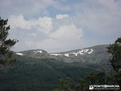 Valle del Lozoya - Camino de la Angostura;fruto del tejo sitios visitar madrid
